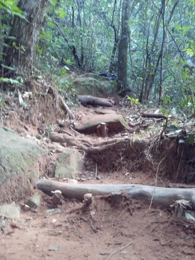Processo de construção de degraus - Contém a água e melhoram a trilha